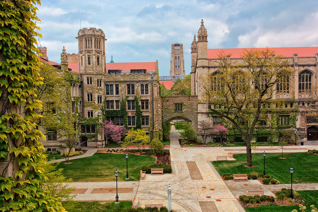 University of Chicago - TOP University
