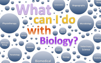 Do you know biology is a good major?
